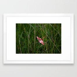 Crane 003 Framed Art Print
