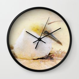 Gannets Wall Clock
