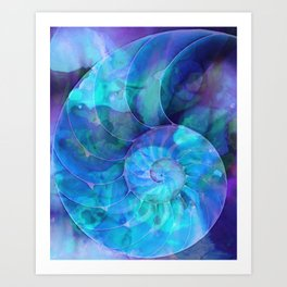 Blue Nautilus Shell  - Seashell Art By Sharon Cummings Art Print