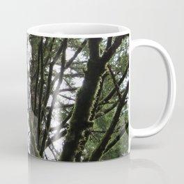 Douglas Fir Coffee Mug