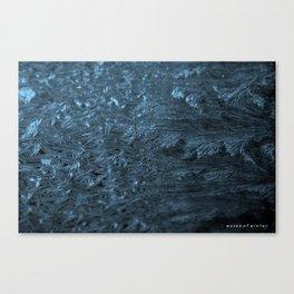 Winter Waves Canvas Print