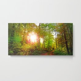 MM - Evening sun in the fall forest Metal Print