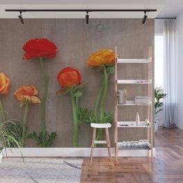 Orange Ranunculus flowers Wall Mural
