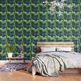 Spruce branch in spring. Wallpaper
