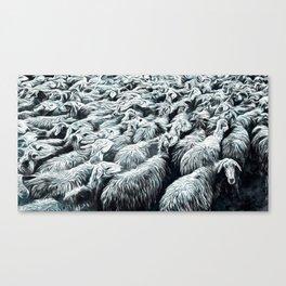 Animaline - Sheeps Canvas Print