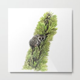 Mouse Lemur in the Spiny Forest Metal Print