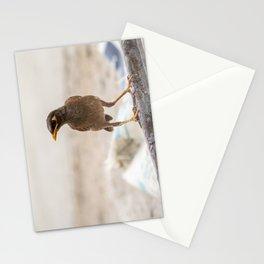 Treurmaina Stationery Cards