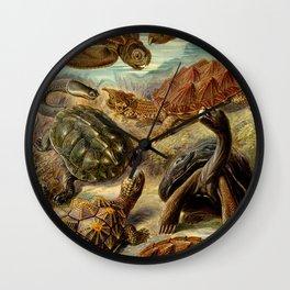 Sea Turtle Collage-Ernst Haeckel Wall Clock