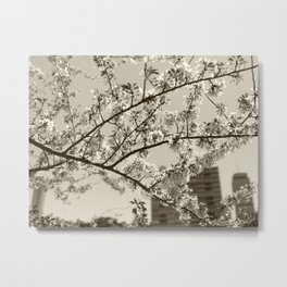 Spring Blossoms #04 Metal Print