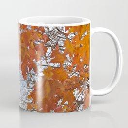 Fall Tree Photography Print Coffee Mug