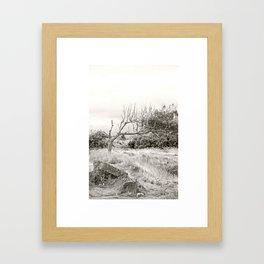 Living Witness Framed Art Print