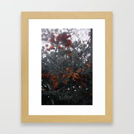 Muted Holly Framed Art Print