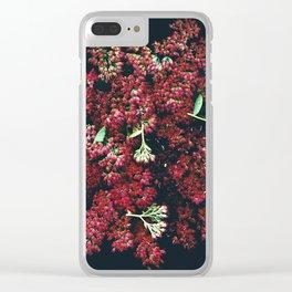 Burgundy Sedum Flowers Clear iPhone Case