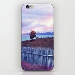 Sunset and lone tree iPhone Skin