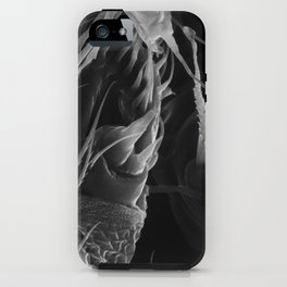 Spinnerets iPhone Case