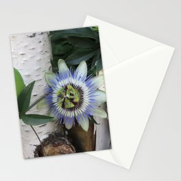 passion flower - bluecrown variety Stationery Cards