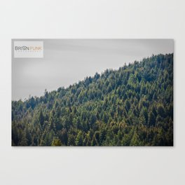 Redwood Treeline Canvas Print