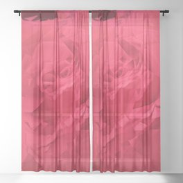 Bloomed Rose Vibrant Pink Sheer Curtain