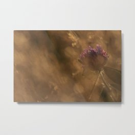 Golden Hour Flower Metal Print