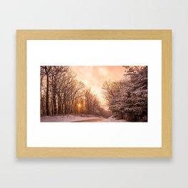 Nature's Beauty. Framed Art Print