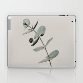Stretch: minimalist botanical eucalyptus Laptop & iPad Skin