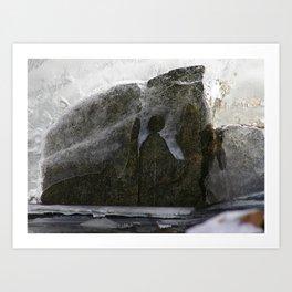 Sheathed in Brittle Skin Art Print