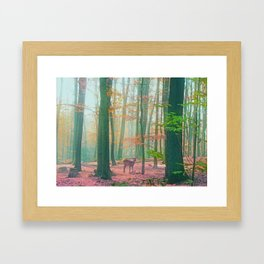 Little Deer  Framed Art Print