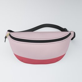 Candy Color Block Fanny Pack