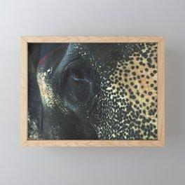 Asian Elephant Face Details  Framed Mini Art Print