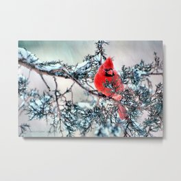 Valentine's Day Blizzard Cardinal Metal Print
