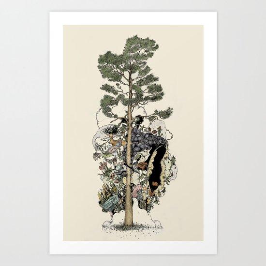 Everdream Pine Art Print