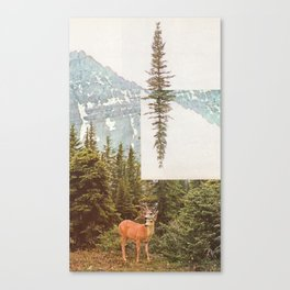 The Why and the What For Canvas Print