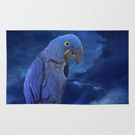 Hyacinth Macaw Rug