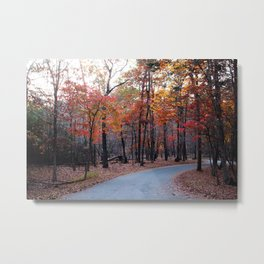 A Journey Through Fall Metal Print