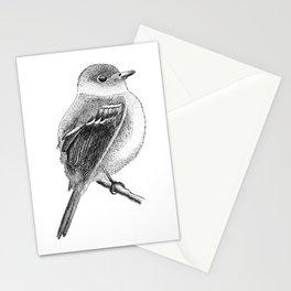 Empidonax The Bird Stationery Cards