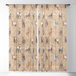 Wild Mustang Horses 3 Sheer Curtain