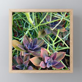 Used Lawnmower For Sale Framed Mini Art Print