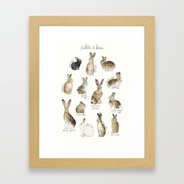Rabbits & Hares Framed Art Print