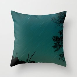 Rotary Throw Pillow