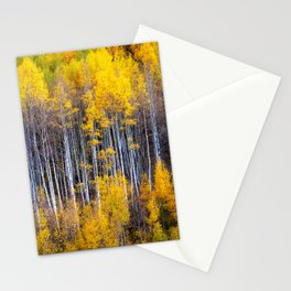 Autumn Aspens - Rows of Colorado Aspen Trees with Autumn Color in Reflection Illusion Stationery Cards