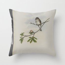 062 Butalis grisola. Spotted Flycatcher Throw Pillow