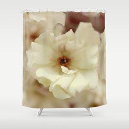 Vintage Dream Roses - JUSTART © Shower Curtain
