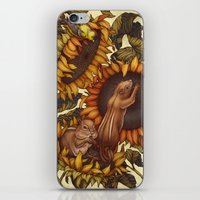 autumn iPhone & iPod Skins featuring Autumn by Kate O'Hara Illustration