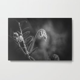 Black and white flowers high contrast Metal Print