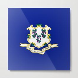 State Flag of Connecticut Metal Print