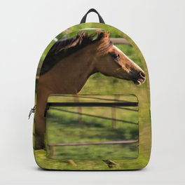 Run Romeo Backpack