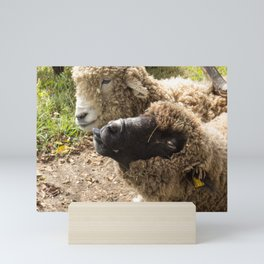 Two Sheep with Silly Faces Mini Art Print