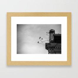 : roots : Framed Art Print