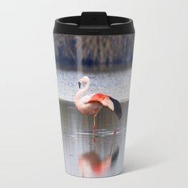 Chilean Flamingo (Phoenicopterus chilensis) Travel Mug