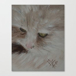 Zigne - The Philosopher Canvas Print